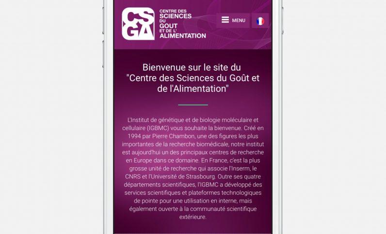 Galerie du projet : C.S.G.A., Jean-Charles GIEN, création de sites Internet à Mâcon (71) et Lyon (69)