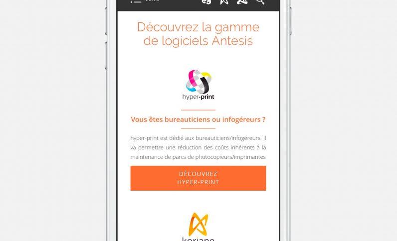 Galerie du projet : Société Antesis, Jean-Charles GIEN, création de sites Internet à Mâcon (71) et Lyon (69)